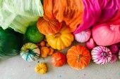 Rainbow Halloween House of Fete_3133